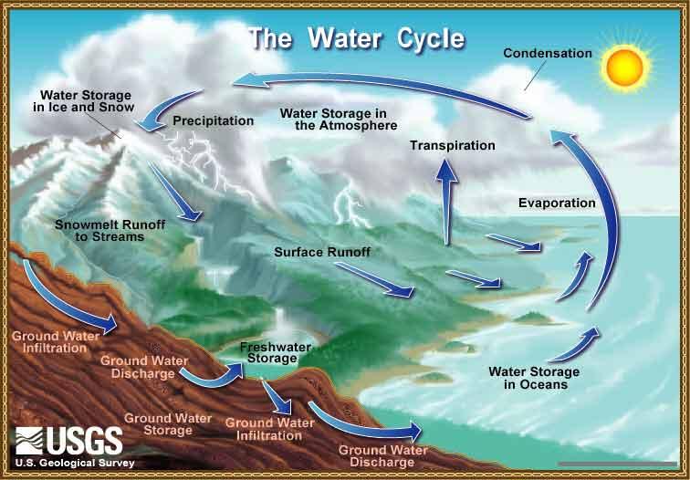 blog - watercyclelow